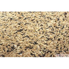 Canary Gold 20kg