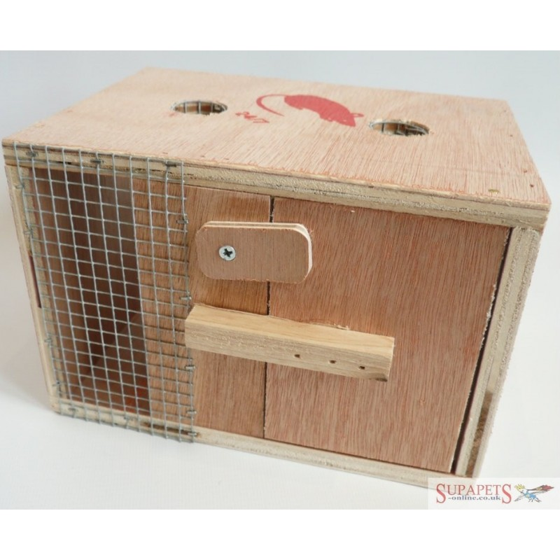 Humane Box Mouse Trap