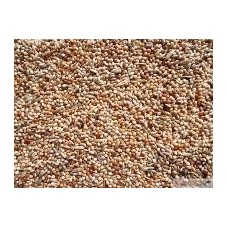 Duvo Budgie Seed 20kg