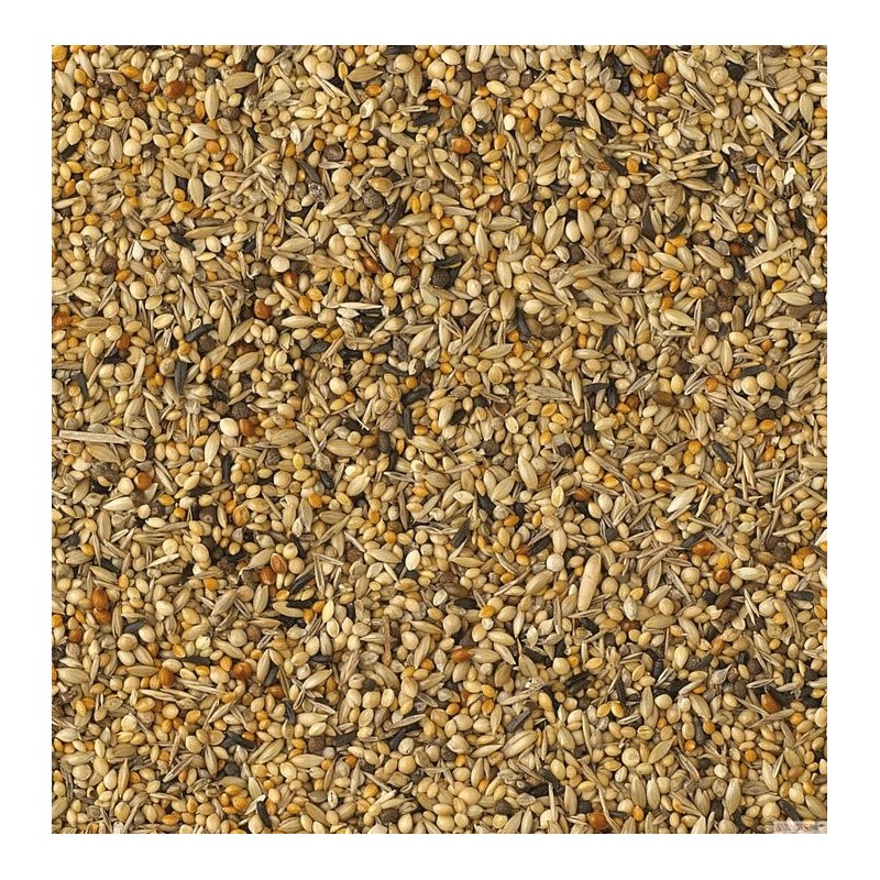 King Foreign Finch Breeding Luxury Mix 20kg