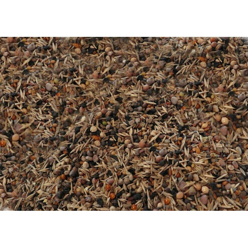 Beyers Deli Nature 93 Condition Seed 15kg