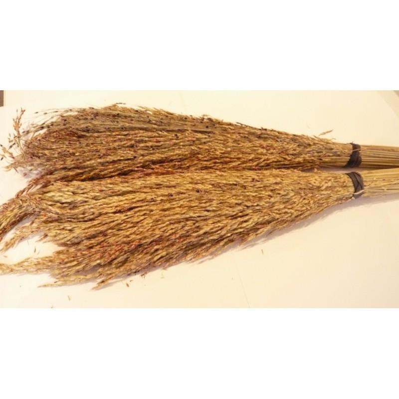 Delicha® Grass Seed Sprays