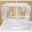 Display Cage