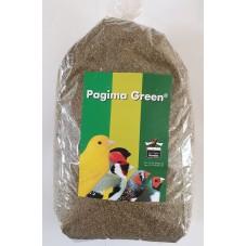 Pagima Green Grass Seed